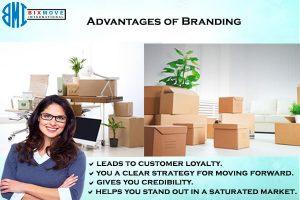 importance of brand development